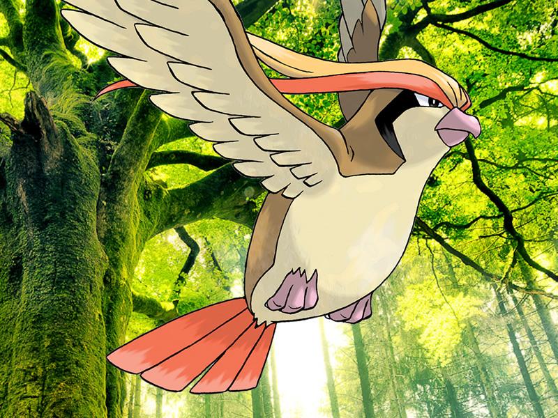 Bonus candies in the Pokemon Go gen 2 update