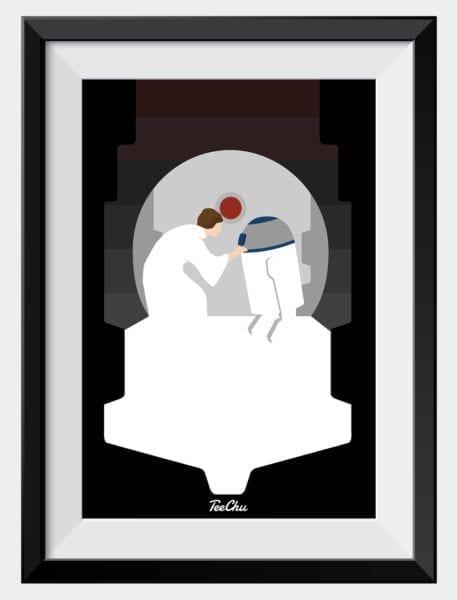 leia-framed