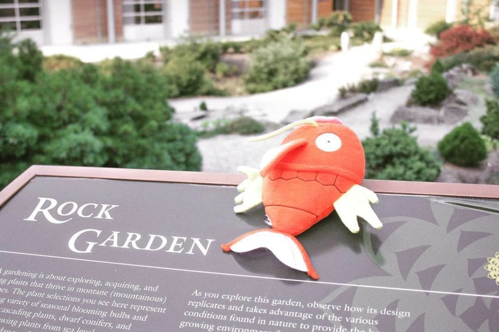 Hitting the Rock Garden with Wonderswann!